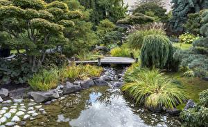 Фото Канада Сады Ручеек Дерево Кустов Kelowna Kasugai Gardens Природа
