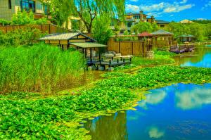 Фото Китай Парк Пирсы Водяные лилии Речка HDRI Beijing Zen Garden Природа