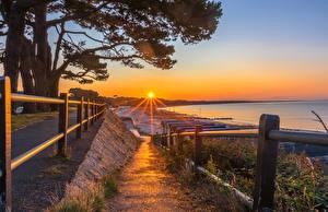 Фотография Англия Рассветы и закаты Побережье Солнца Забора Деревья Mudeford Christchurch District Природа