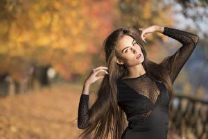 Картинка Боке Позирует Платье Рука Волосы Смотрит Шатенка Federica девушка