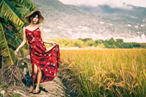 Картинка Поля Азиатки Позирует Платья Шляпы Брюнетки девушка