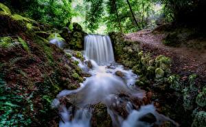 Обои Лес Речка Водопады Камень Ирландия Мха Tipperary Природа