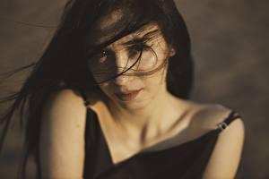 Фотография Смотрит Брюнетки Волос Ветром Лица девушка