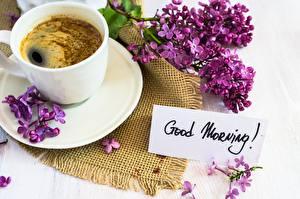 Фотографии Утро Кофе Сирень Чашка Текст Английский Еда Цветы
