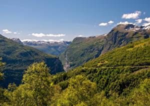 Фотография Норвегия Гора Леса Каньон Geirangerfjord Природа