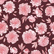 Обои Пион Текстура Рисованные цветок