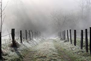 Фотография Дороги Траве Забором Туман Природа