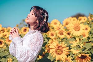 Фото Подсолнечник Азиатки Боке Позирует Рука Шатенки Миленькие девушка Цветы