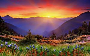 Фотографии Рассвет и закат Горы Пейзаж Трава Лучи света