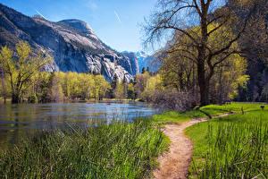 Картинка Америка Парки Гора Весна Озеро Йосемити Дерева Тропы Природа