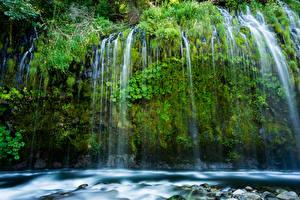 Фотография Штаты Водопады Калифорния Скала Мох Mossbrae falls Природа