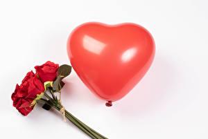 Картинка День всех влюблённых Букеты Розы Белом фоне Красный Воздушных шариков Серце цветок