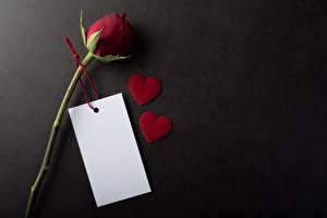 Обои для рабочего стола День всех влюблённых Роза Сером фоне Шаблон поздравительной открытки Сердечко Лист бумаги Бордовая цветок