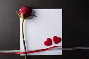 Фотография День всех влюблённых Роза Шаблон поздравительной открытки Лист бумаги Бордовая Сердечко Ленточка Сером фоне цветок