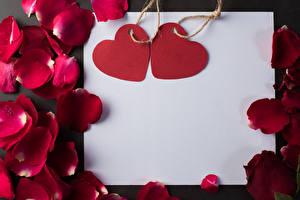 Фотографии День святого Валентина Шаблон поздравительной открытки Лист бумаги Серце Лепестки Бордовая цветок