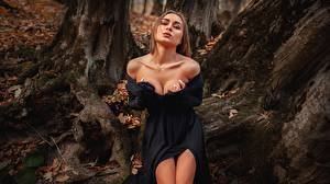 Фотографии Позирует Платья Руки Вырез на платье Шатенка Aleksei Iurev молодая женщина