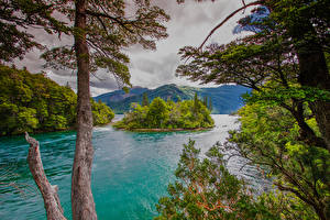 Фотография Аргентина Горы Остров Залива Дерева Chubut Patagonia Природа
