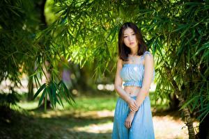 Обои Азиатки Ветвь Позирует Рука Шатенки Миленькие девушка
