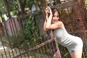 Фотографии Азиатка Ограда Позирует Платья Шатенка Ворота молодые женщины
