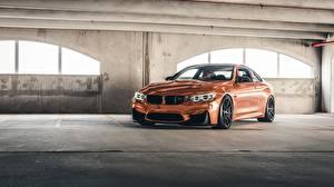 Обои BMW Купе F82, Sight, Bronze Автомобили картинки