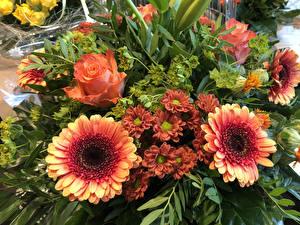 Обои для рабочего стола Букеты Розы Гербера Хризантемы Цветы