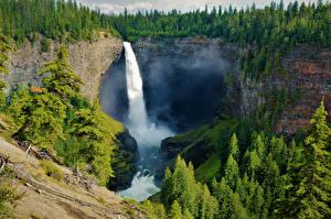 Обои для рабочего стола Канада Парк Лес Водопады Утес Helmcken Falls Wells Gray NP Природа