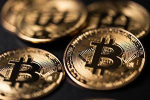 Картинки Вблизи Bitcoin Монеты Деньги