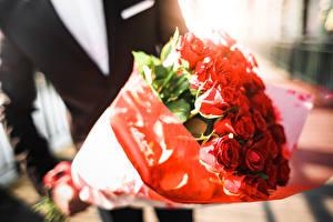 Фотографии Вблизи Букет Роза Красная цветок