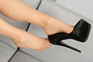 Фотография Крупным планом Ноги Туфли Колготки Девушки