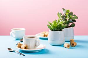 Фотографии Кофе Печенье Размытый фон Стол Чашка Ложка Продукты питания