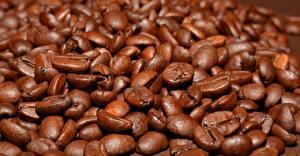Обои для рабочего стола Кофе Много Вблизи Зерна Коричневый Еда