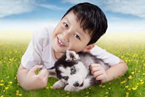 Фото Собака Мальчик Смотрит Щенки Хаски ребёнок Животные
