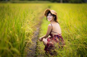 Картинки Поля Азиаты Боке Сидящие Платья Спины Шляпа Брюнетки Взгляд девушка