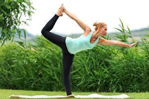 Фото Фитнес Йога Тренировка Растяжка упражнение Блондинка Рука Ноги Траве молодая женщина