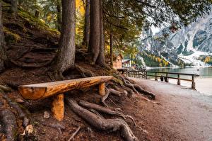 Фото Италия Скамья Дерево Lake Braies Природа