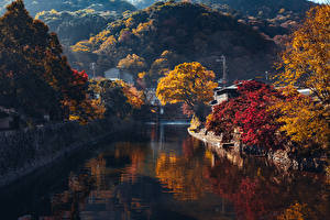 Обои Япония Киото Осень Горы Водный канал Деревья Arashiyama Природа