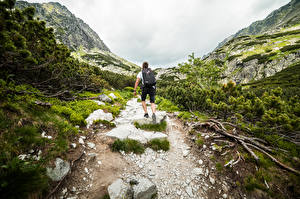 Картинки Гора Мужчины Камни Тропа Вид сзади Рюкзак Альпинисты Природа