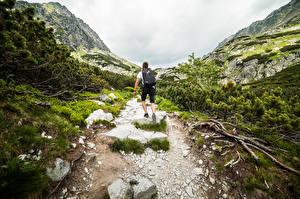 Картинки Гора Мужчины Камни Тропа Вид сзади Рюкзак Альпинисты