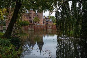 Картинка Голландия Замок Пруд Ветвь Ограда Castle De Haar
