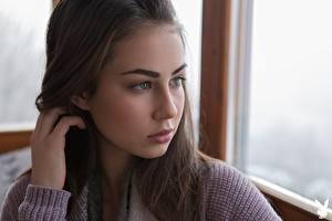 Обои Playboy Sophie Limma Рука Волосы Смотрят Лица девушка