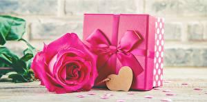 Картинка Роза День всех влюблённых Розовая Подарок Бантики Сердечко цветок