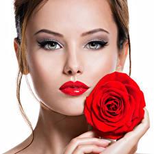 Картинка Розы Белый фон Шатенка Лица Красными губами Красивый молодая женщина