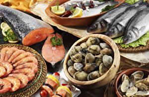 Обои Морепродукты Рыба Креветки Ракушки Еда