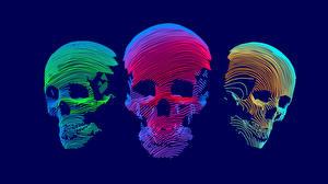 Обои Черепа Векторная графика Втроем 3D Графика