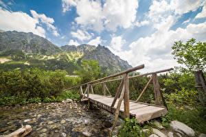 Фотографии Словакия Гора Реки Мосты Деревянный Tatras Mountains Природа