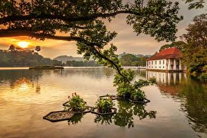 Фотография Шри-Ланка Озеро Дома Рассвет и закат Ветка Kandy Lake Природа