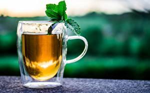 Картинка Чай Чашке Мяты Боке