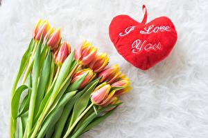 Обои для рабочего стола Тюльпан Сердечко Слова Английская цветок