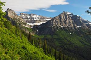 Обои Штаты Парки Гора Леса Glacier National Park Природа