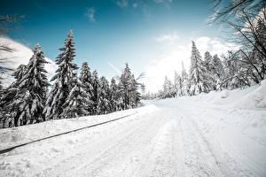 Обои Зима Дороги Снега Деревья